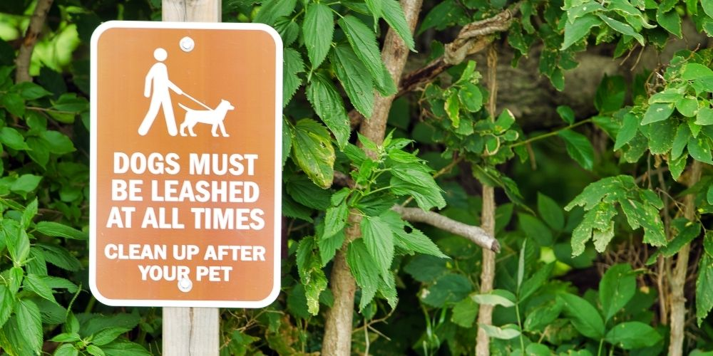 Dogs must be Leashed at all times