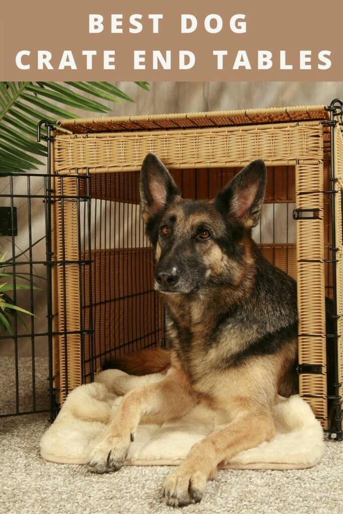 Best Dog Crate End Tables